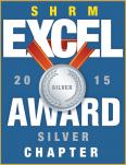 silver-excel-award-2015-2